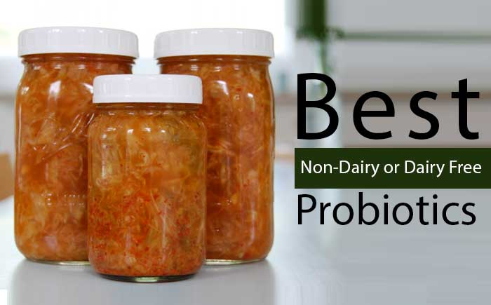 Best Dairy Free Non Dairy Probiotics For Adults Babies