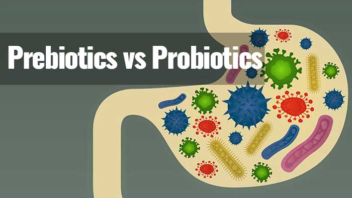 Can Prebiotics Be Taken With Food